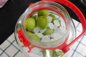 ミルフィーユのように交互に梅と氷砂糖を並べます