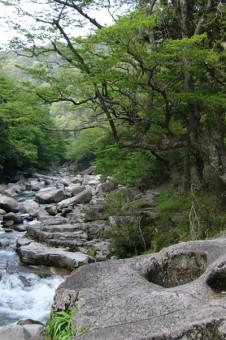 奥津温泉の渓谷