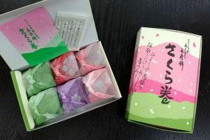 Yoshino_sakuramaki_4066