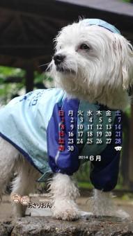 2014_06_calendar_iOS7