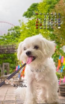 2014_07_calendar_android