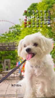 2014_07_calendar_i7